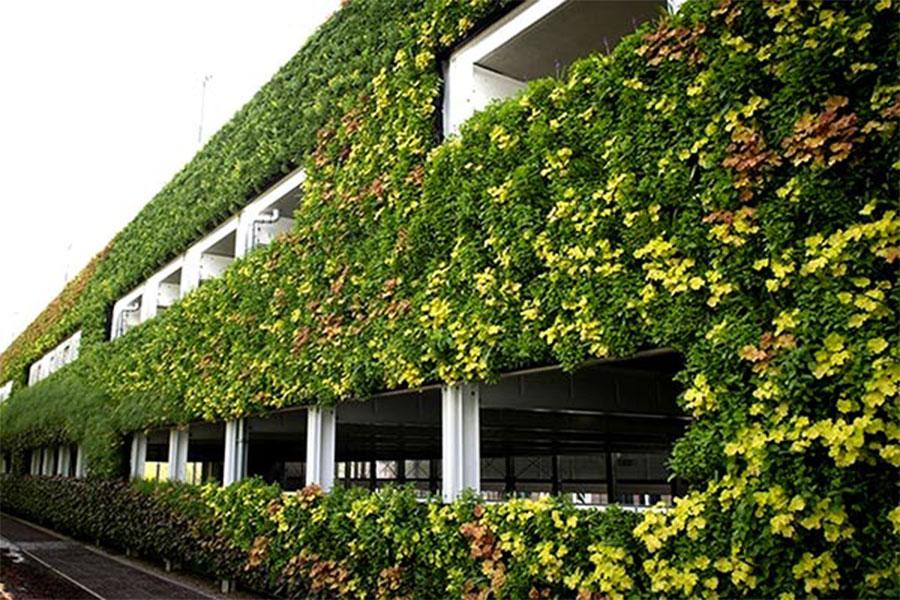 نمای سبز ساختمان