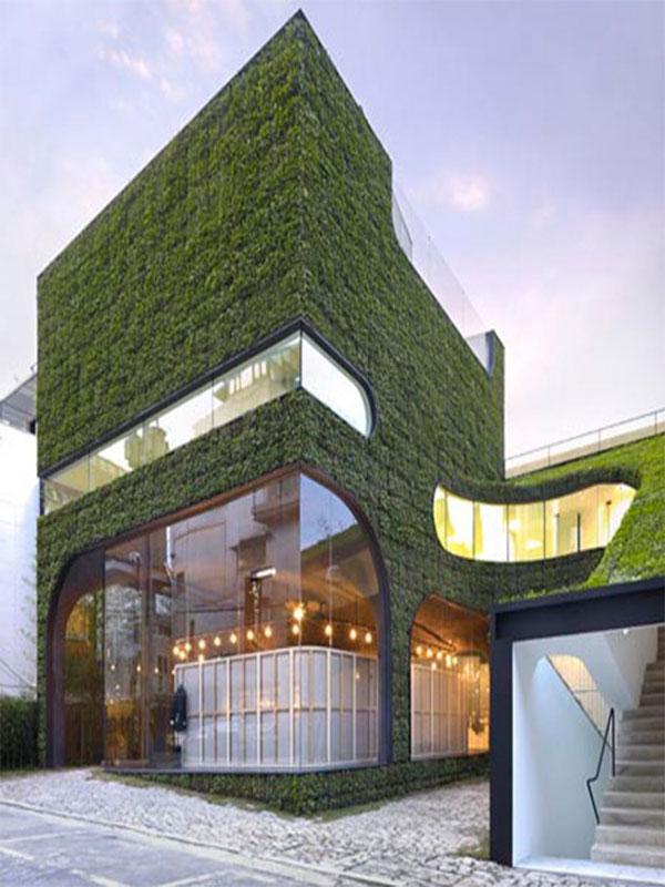 طراحی نمای سبز